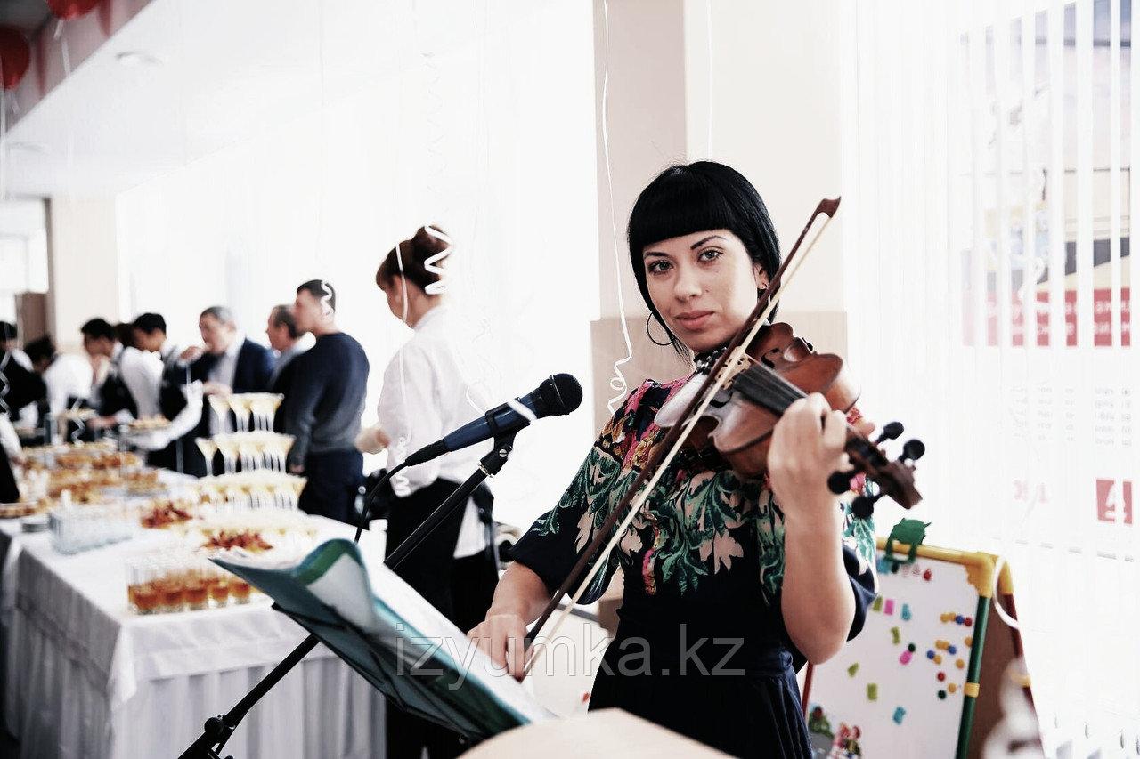 Предложение руки и сердца, скрипка в Павлодаре - фото 3