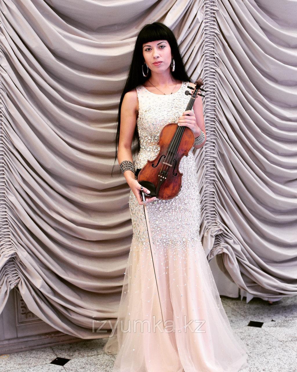 Предложение руки и сердца, скрипка в Павлодаре - фото 5