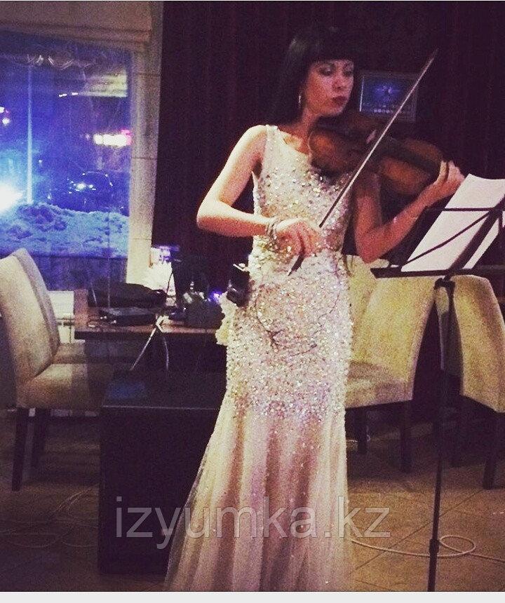 Предложение руки и сердца, скрипка в Павлодаре - фото 2