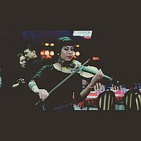 Предложение руки и сердца, скрипка в Павлодаре