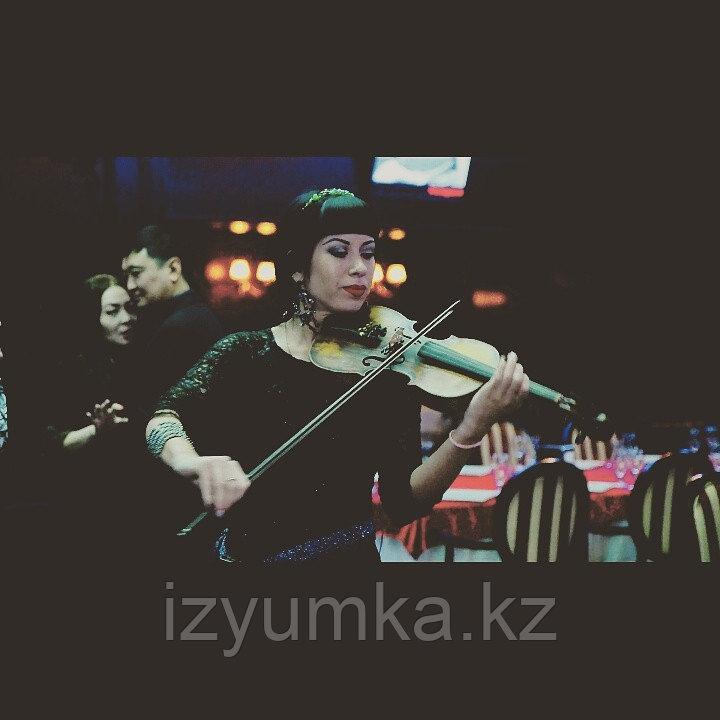 Предложение руки и сердца, скрипка в Павлодаре - фото 1