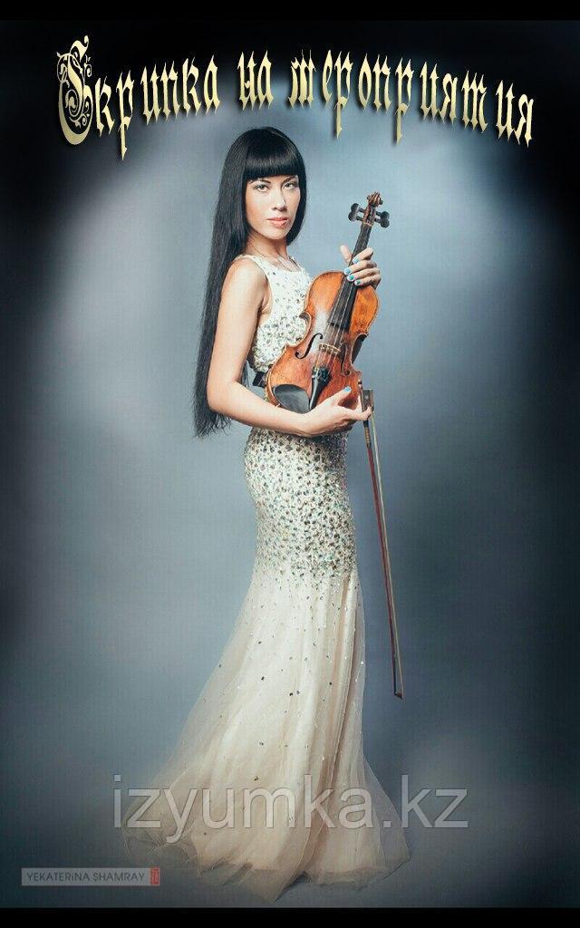 Предложение руки и сердца, скрипка в Павлодаре - фото 9