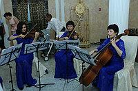 Струнный квартет, выездная регистрация брака в Павлодаре