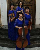 Музыкальное струнное шоу в Павлодаре, фото 1