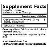 PQQ (пирролохинолинохинон), 20 мг, 30 капсул на растительной основе, Doctor's Best, фото 2