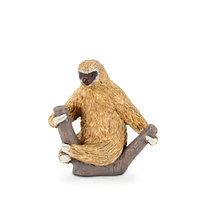 Mojo Ленивец двупалый