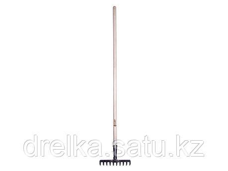 Грабли прямые ЗУБР 4-39483-10, из нержавеющей стали, 10 зубцов, с черенком , фото 2