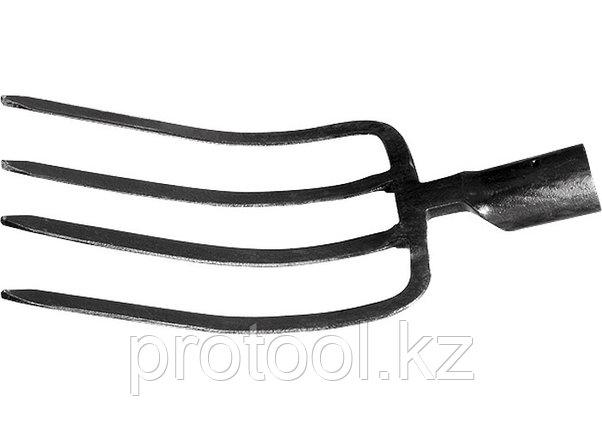 Вилы 4-х-рогие, 175 х 275 мм, без черенка, садово-огородные // СИБРТЕХ, фото 2