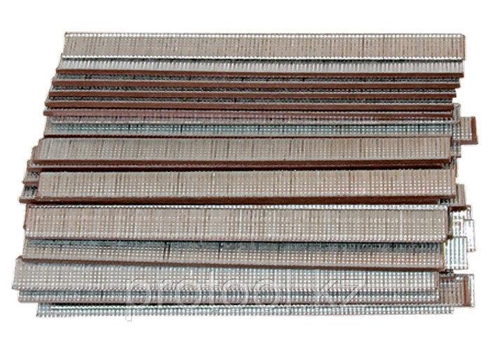 Гвозди для пнев. нейлера, длина - 10 мм, ширина - 1,25 мм, толщина - 1 мм, 5000 шт.// MATRIX