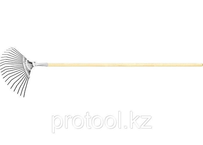 Грабли веерные 20 зубьев, с черенком, оксидированные, плоский зуб// СИБРТЕХ Россия