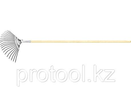 Грабли веерные 20 зубьев, с черенком, оксидированные, плоский зуб// СИБРТЕХ Россия, фото 2