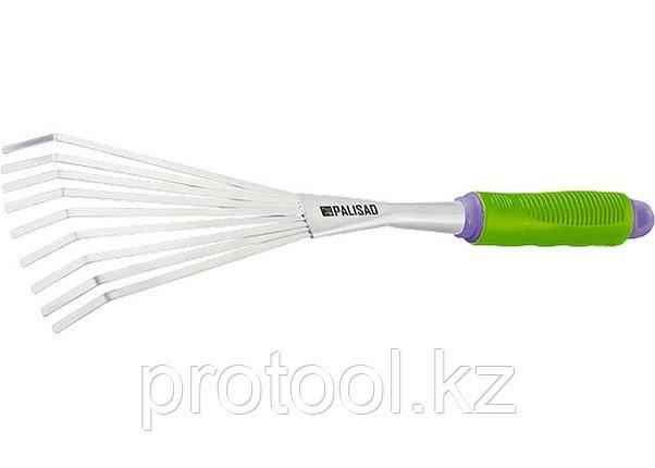 Грабли веерные 9-зубые, обрез. рукоятка, может использ. в сборе с ручкой 63016, 63017// PALISAD, фото 2