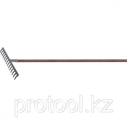 Грабли с деревянным черенком, стальные, покрытые эпоксидом // PALISAD LUXE, фото 2