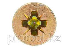 Дюбель-гвоздь полипропиленовый с потайным бортиком 8х60мм,100шт//ШУРУПЬ