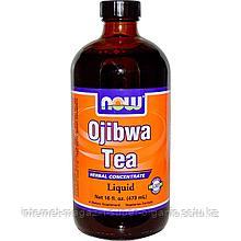 Жидкий экстракт чая Оджибва, 16 унций (473 мл), Now Foods