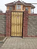 Ворота + калитка, фото 5