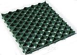 Газонная решетка  600х600х40 Whatsup 87075705151, фото 2