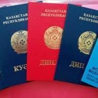 Дипломы, сертификаты - выдача, выписка, обучение