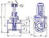 Задвижка чугунная 30ч906бр параллельная двухдисковая с выдвижным шпинделем с электроприводом, фото 4