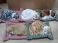 "Интерьерный сувенир ""Кошки-собачки на пледе""."