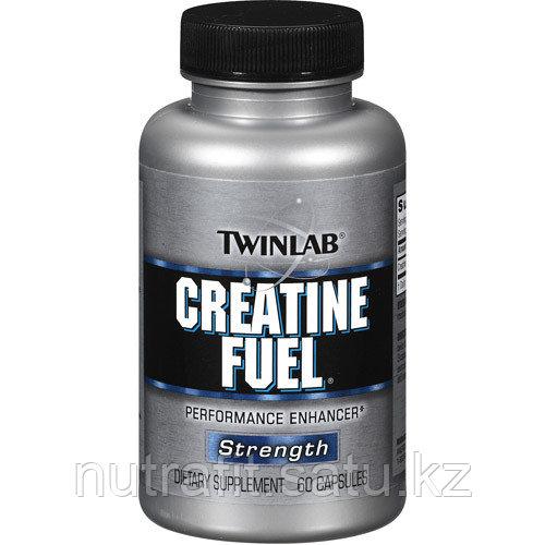 Fuel Creatine