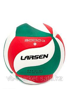 Мяч волейбольный Larsen