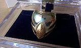 Кольцо для пейнтбола, фото 3