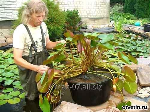 Корзина для водных растений AguantidaR 180*180*180
