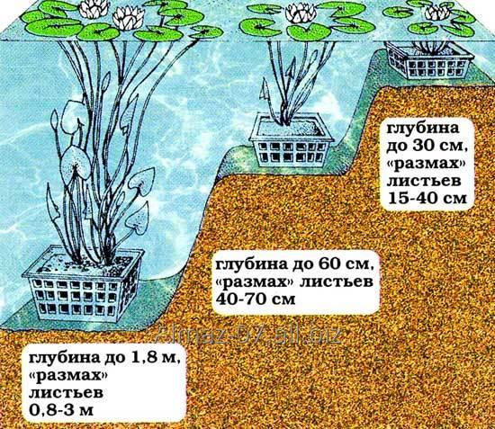 Корзина для водных растений AguantidaR 240*240*210