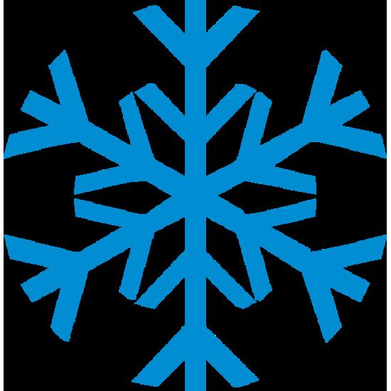 устойчив к холоду и морозу