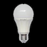 Светодиодная лампа ТМ Tecata Е27 12Вт 5000К