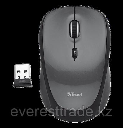 Мышь беспроводная Trust Yvi Mini черный, фото 2