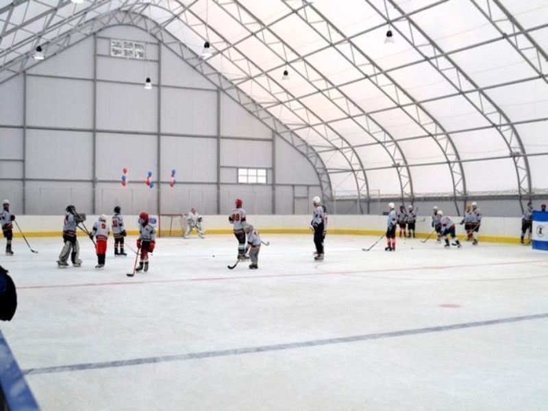 Готовое решение Хоккей
