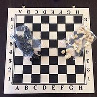 Шахматы 40 х 40 см