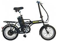 Электровелосипед Wellness Husky 350W, фото 1