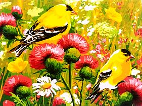 """Картины по номерам """"Желтые птички"""""""