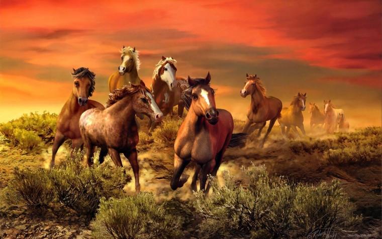 """Картины по номерам """"Прекрасные лошади"""""""