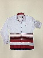 Рубашки Doctor Junior