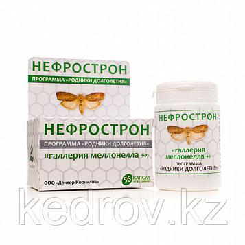 Нефрострон «Галлерия меллонелла +», 56 капсул. Профилактика заболеваний мочеполовой системы.