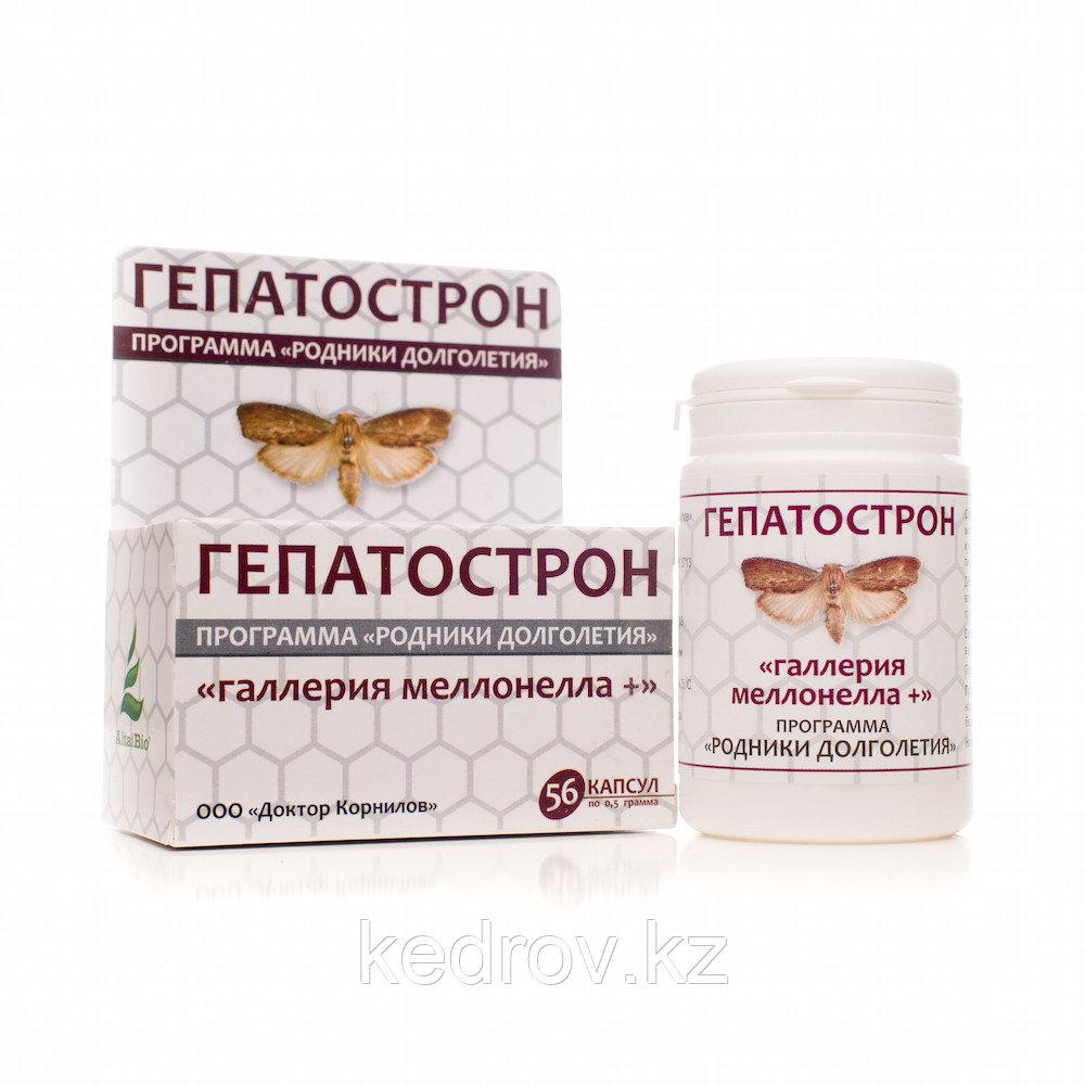 Гепатострон « Галлерия меллонелла +», 56 капсул.  При заболеваниях печени, желчного пузыря и желчевыводящих пу