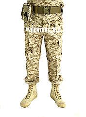 Камуфлированные брюки digital desert