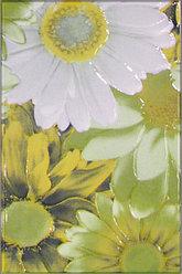 Керамическая плитка М-Квадрат Парадис декор зел. белая ромашка 341721/1 (25*40) *