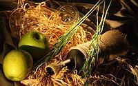 Рецепт домашнего кальвадоса