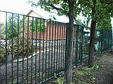 Забор металлический из вертикальных прутьев, фото 2