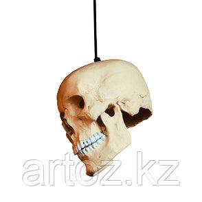 Люстра Voodoo lamp hanging, фото 2