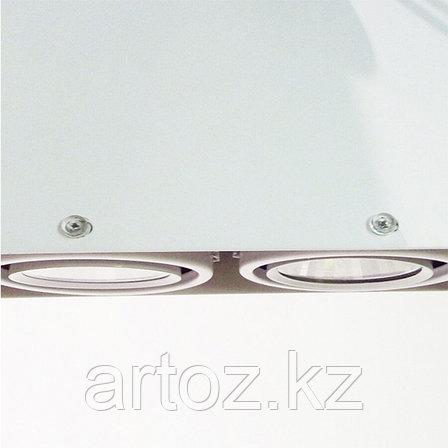 Светильник подвесной COB-MZ-162F Spot-2*5w,3000/6000К (white), фото 2