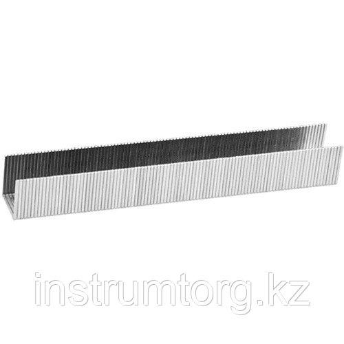 Скобы KRAFTOOL 10  мм для степлера тип 80, 5000 шт