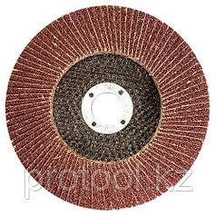 Круг лепестковый торцевой КЛТ-1, зернистость Р100(12Н), 125 х 22,2 мм, (БАЗ)//Россия