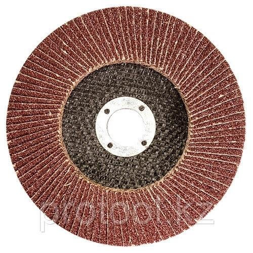 Круг лепестковый торцевой КЛТ-1, зернистость Р80(16Н), 125 х 22,2 мм, (БАЗ)//Россия
