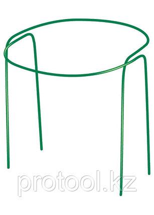 Кустодерж. круг 0,8м, выс. 0,9м 2 шт.  диаметр трубы 10мм// Россия, фото 2